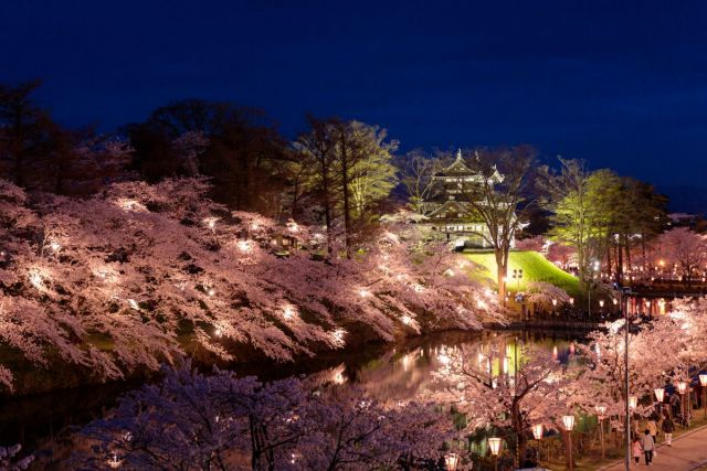Takada Castle Cherry Blossom Viewing for 2 Million People